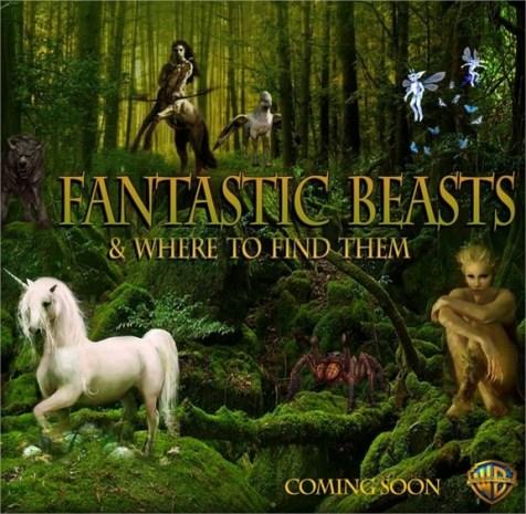 Harry Potter BlogHogwarts Animales Fantasticos y donde Encontrarlos Poster