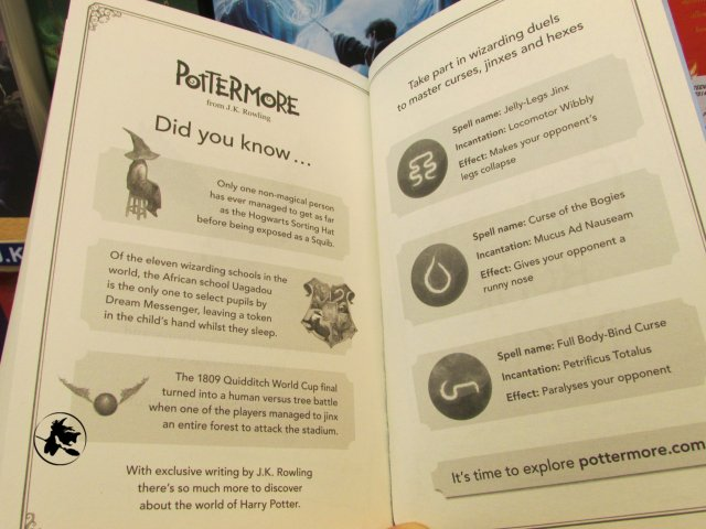 Harry Potter BlogHogwarts Bloomsbury Pottermore (3)