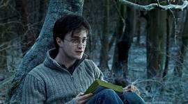 Daniel Radcliffe Odia su Actuación en las Películas de Harry Potter