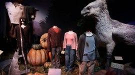 Próxima Exhibición de Harry Potter en el Museo del Juguete de México