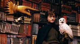 Proyecto Fan: Sistema de Clasificación para Bibliotecas Escolares Mágicas