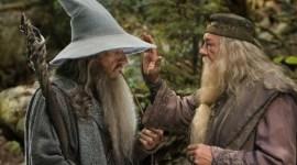 La Cruzada de JK Rowling para que Dumbledore y Gandalf se puedan Casar