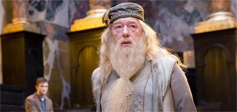 Harry Potter BlogHogwarts Albus Dumbledore Horrocrux