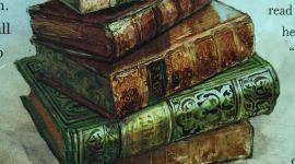 'Harry Potter y la Piedra Filosofal' Ilustrado: Capítulo 13