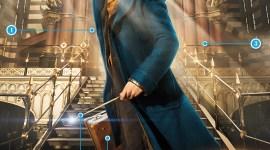Los 5 secretos detrás de la imagen de Newt Scamander