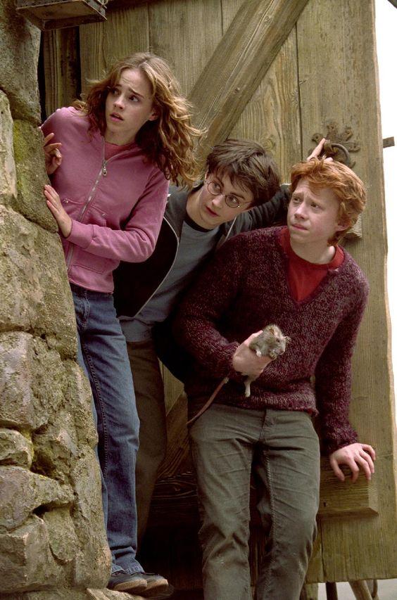 hermione harry ron hagrid