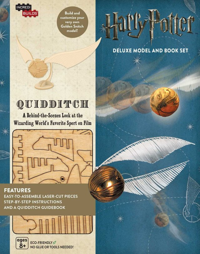 quidditch set