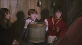 The Wizarding World of Harry Potter en Hollywood estaría enfermando a la gente