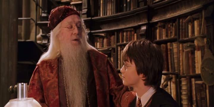 dumbledore harry