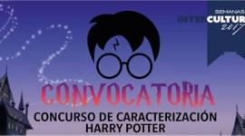 El gobierno de Naucalpan, México, busca al doble de Harry Potter!