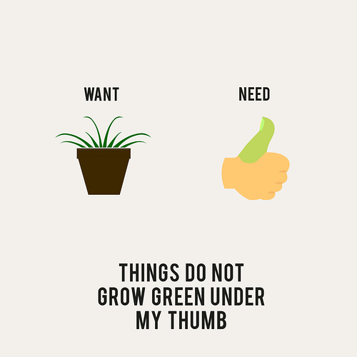 A diferença entre o que queremos e o que precisamos