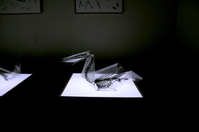 Oritsunagumono: Raio-x de origamis