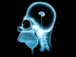O que é inteligência, afinal?