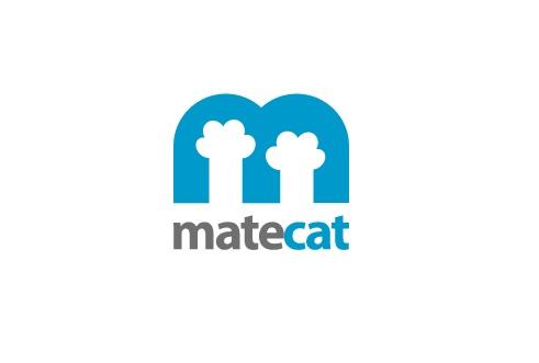 Matecat review