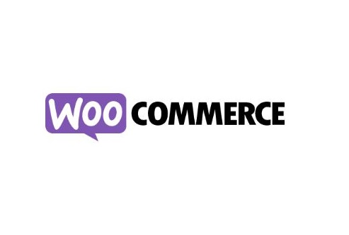 Woocommerce ecommerce builder wordpress plugin review