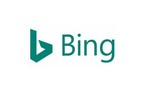 Bing review