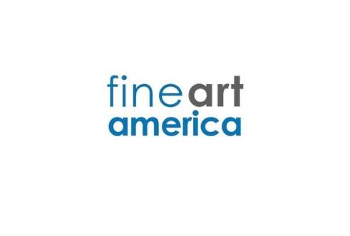 FineartAmerica review