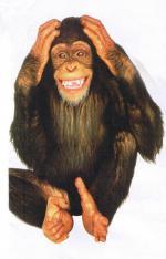 7529e5dd2ba Hobrink: De aap komt uit de mouw! - Taede A. Smedes