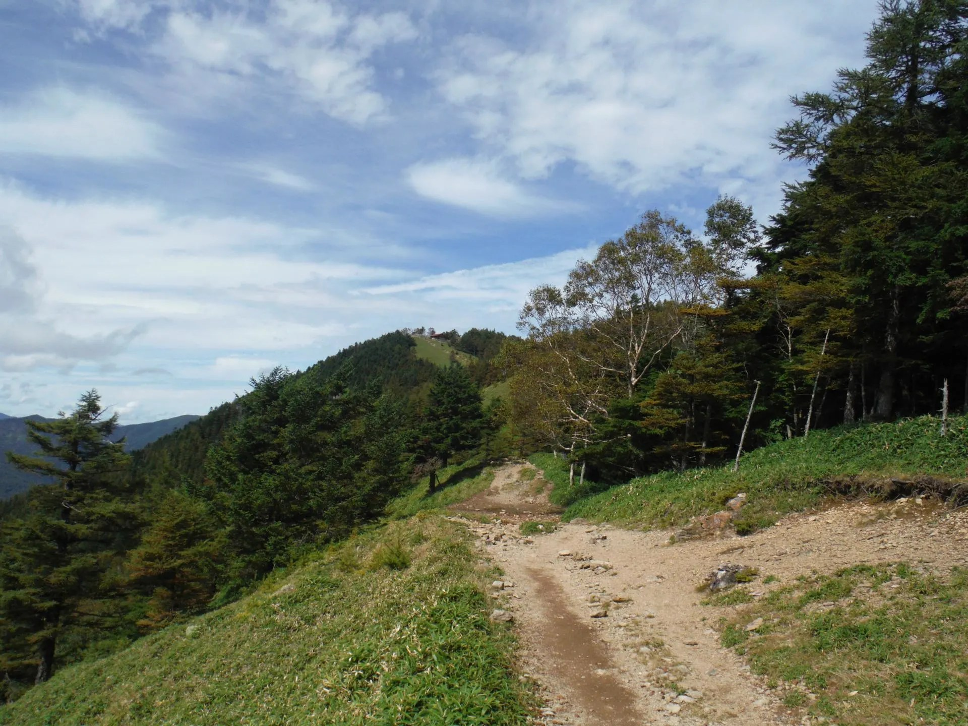奧集落から雲取山 - へなちょことたん どこいくっ?