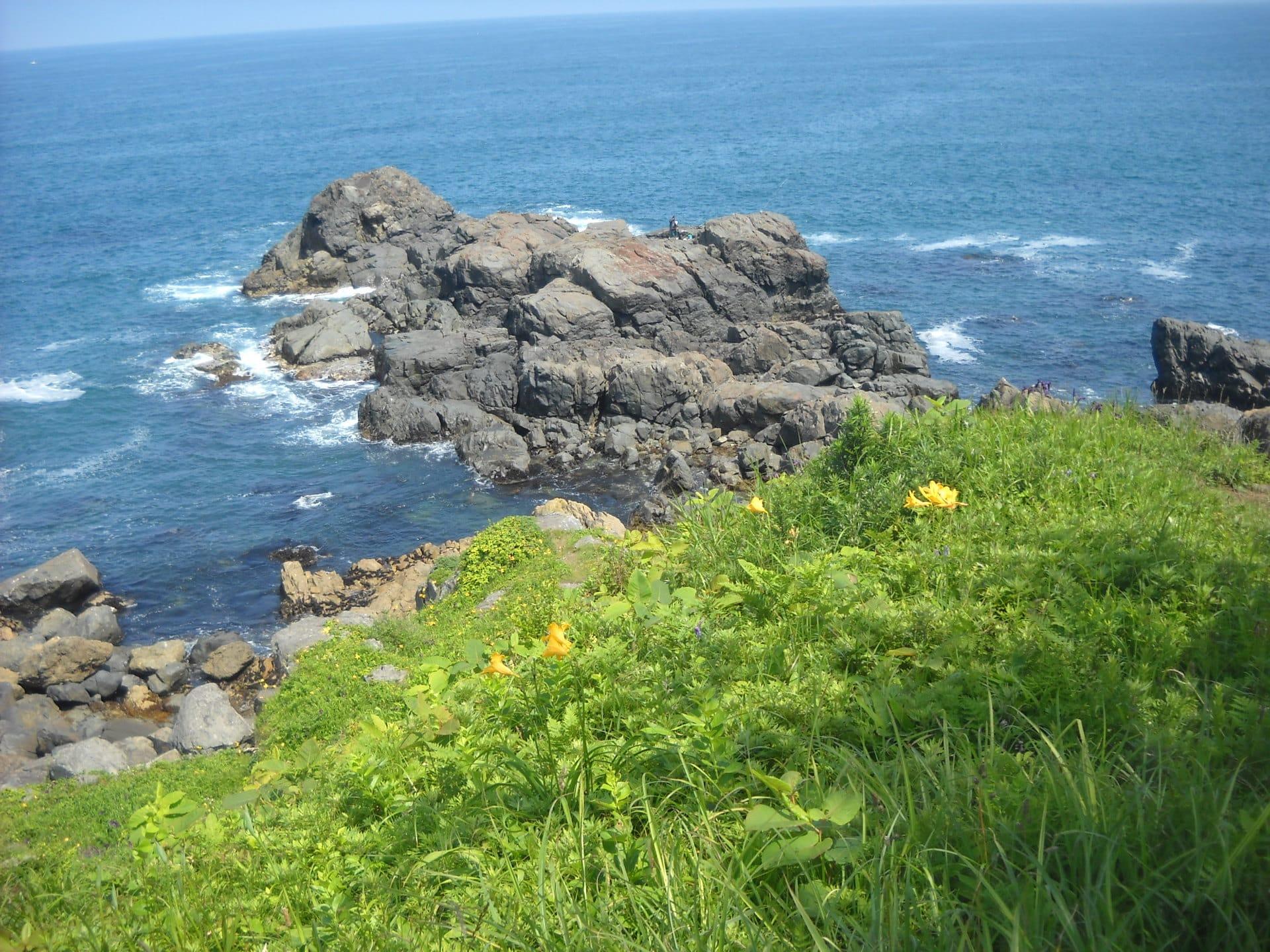 種差海岸と司馬遼太郎 - 花と山歩き