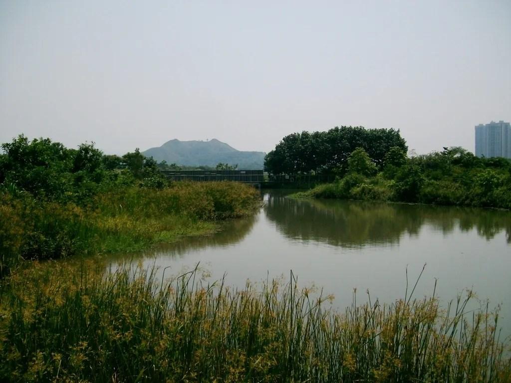 香港濕地公園④ - 吃飯了沒有?