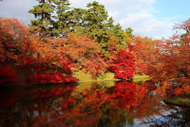 紅葉(弘前公園2) - じょっぱり寫真館