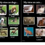 My view on dogs: Chihuahua, Beagle, Poodle, German Shepherd, Great Dane, Pit Bull.  My view on Cats: Cat, Cat, Cat, Cat, Cat, What da fuckkkkk?