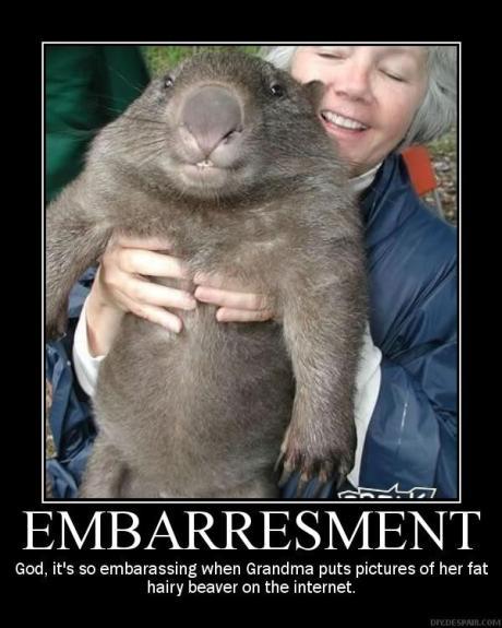 Grandmas Hairy Beaver