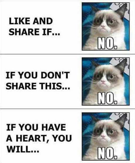 "Facebook: ""Like and share if..."" Grumpy Cat: ""NO.""  Facebook: ""If you don't share this..."" Grumpy Cat: ""No.""  Facebook: ""If you have a heart, you will..."" Grumpy Cat: ""No."""
