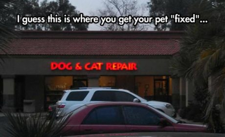 "I guess this is where you get your pet ""fixed"".... ""Dog & Cat Repair"""