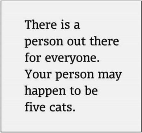 There is a person out there for everyone.  Your person may happen to be five cats.