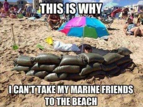 This is why I can't take my marine friends to the beach.