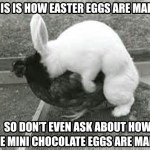 How Easter Eggs Are Made