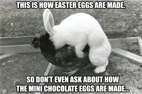 This is how Easter Eggs are made. So don't even ask about how the Mini Chocolate eggs are made...