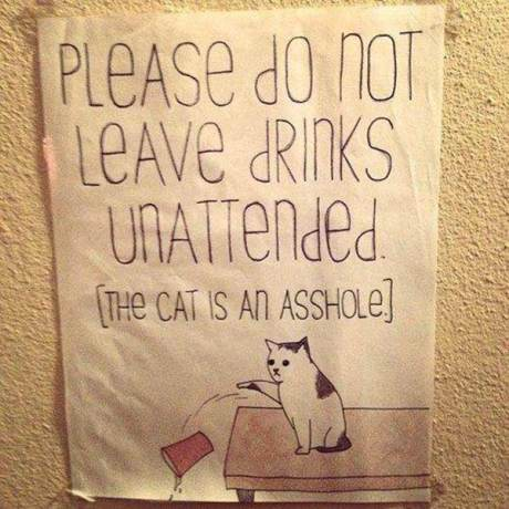 """""""Please Don't Leave Drinks Unattended. The cat is an asshole."""""""