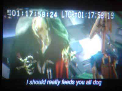 I should really feeds you all dog!