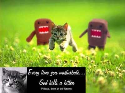God Kills a Kitten