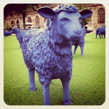 Blue Sheep Parking de la Cathédrale