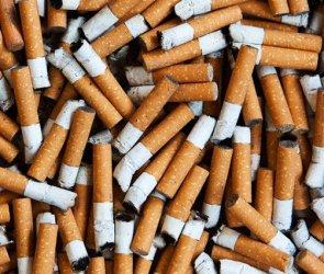zéro mégo ramassage cigarettes Strasbourg