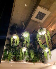 Pola Melting Bowls Strasbourg restaurant décoration