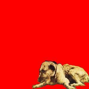 Van Morrison - Veedon Fleece (1974)