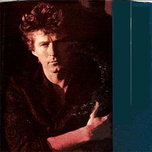 Don Henley - The Boys of Summer (1984)