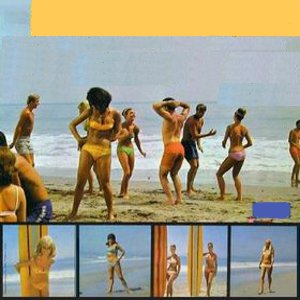 Various Artists – How To Stuff A Wild Bikini (original motion picture soundtrack) (1965)