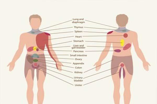 Ezek az átsugárzó fájdalmak akár életveszélyesek is lehetnek! Figyelj a jelekre!