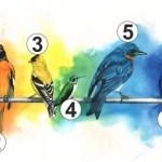 Te melyik madarat választod? Megmutatja mire van most a legnagyobb szükséged!