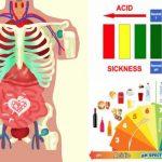 A stressz után a másik leggyakoribb egészségromboló a szervezetünk elsavasodása.