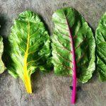 14 vegetáriánus étel, amelyek több vasat tartalmaznak a húsnál!