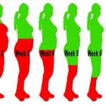 Így idd le magadról a túlsúlyt 8 hét alatt