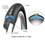 Parts of Tyre | Structure of a Tyre