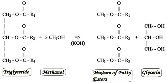 transesterification-process